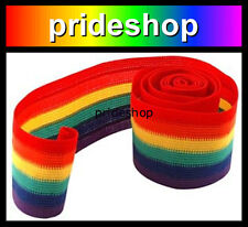 Rainbow Stripe Arm Hat Head Wedding Cake Band Lesbian Gay Pride Rainbow #768