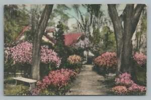 Cherokee Lodge Gardens SUMMERVILLE SC Vintage Hand Colored Albertype 1930s