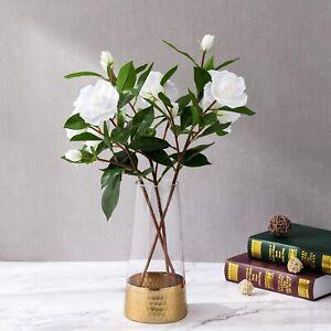 Clear Glass Cylinder Flower Bouquet Vase Decor w/ Gold Metal Hammered Base Accen