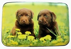 Labrador Puppies Flowers RFID Secure Theft Protection Credit Card Armored Wallet