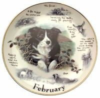 Danbury Mint Border Collie plate February Paul Doyle Dog Plates CP2172