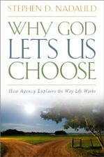 Why God Lets Us Choose: How Agency Explains the Wa