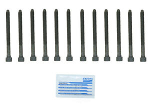 Engine Cylinder Head Bolt Set CRP 81040800