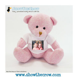 Personalised Photo 20cm Pink Nursery Teddy Bear with Photo, Gift, Keepsake, M...
