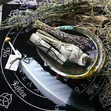 Smudge Kit Feather Fan Abalone Shell Stand Lavender Sage Shaman Native