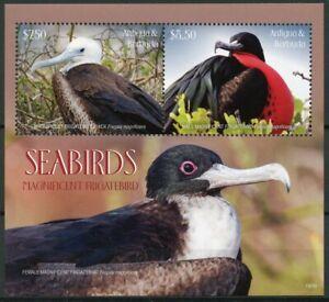 Antigua & Barbuda Birds Stamps 2019 MNH Seabirds Magnificent Frigatebird 2v S/S