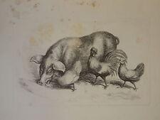 SAMUEL HOWITT 1765-1822 GRAVURE ANGLAISE SCÈNE ANIMAL COCHON POULE COQ  1810