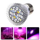 AU 28W E27 LED Plant Grow Light Efficient Hydroponic Full Spectrum Growing Lamp