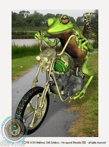 © ART - Rebel Biker green tree FROG motor cycle - Original Artist Print by Di