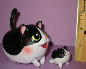 Chubby Puppies Puppy Shorthair Cat Kitten Black White Baby Mom Tuxedo Friends