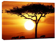 LARGE SUNSET AFRICA LANDSCAPE CANVAS ART PICTURE 26x20""