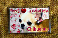 Chihuahua Gift Dog Fridge Magnet 77x51mm  Birthday Gift Xmas Mothers Day Gift