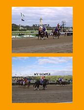 """2 Lost In The Fog 2005 Breeders Cup Horse Racing 8"""" by 10"""" Photos #3"""