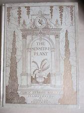 Charles Robinson illus., Shelley The Sensitive Plant, De-luxe vellum-bound copy