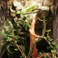 Bendable Artificial Tree Vine Flexible Jungle Habitat Decoration For Lizard New