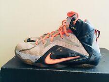 7bb75f7ba73c 2015 Youth Nike LeBron XII 12 Easter Aluminum Black Glow Size 4.5Y Used  Rare DS