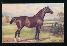 Artist HARRY PAYNE Horses English Hunter Tuck Oilette #9138 PPC