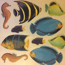 Tatouage Dry Rub Transfer Fish & Sea Horse ~ Ocean Addition, Border, Projects
