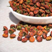 Dried Organic Mountain Sonw Chrysanthemum Flower Buds Tea Herbal Tea 昆仑山雪胎菊250g
