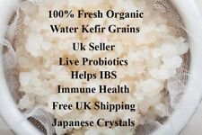 FREE SHIPPING 100% FRESH LIVE ORGANIC WATER KEFIR GRAIN PROBIOTIC 10G GUT HEALTH