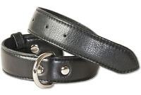 Rimbaldi® Hundehalsband aus Leder für Hunde mit 35-45 cm Halsumfang in Schwarz