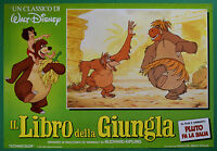 T43 Fotobusta Die Buch Der Dschungel Walt Disney Animation Zeichentrickfilm 3