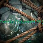 """北 Japanese Glass Fishing Float 9.8"""" Netted Aqua RARE Ocean Sea Survivor Vintage"""