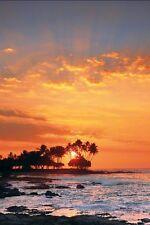 Peter Lik KONA Big Island Hawaii Framed Photograph 14/950