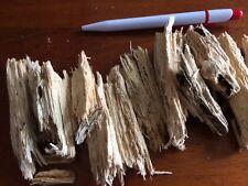 Uncharred Fat Wood For Spark Catcher Tin. Fire Starter, Ferrocerium, Flint.