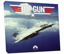 Cuadro Pintura Avión de caza F-14 Tomcat película TOP GUN