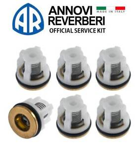 AR CHECK VALVE KIT 42123 for Annovi Reverberi RMW RMV SRMV Pressure Washer Pump
