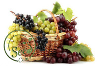 Seeds Mixed Grape Home Garden Vitis Vinifera Delicious Fruit Plant Decor 20 Pcs