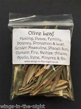 OLIVE LEAF Dried Magical Herb ~ Healing/Peace/Luck/Protection ~ Pagan/Wicca