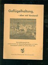 Geflügelhaltung aber mit Verstand 1956
