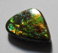 11.90 Cts AMMOLITE Cabochon 100/% Natural Royal Ammolite Fancy Shape ~12x34x3 mm~ Loose Gemstones