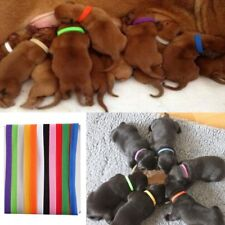 Whelping Puppy Kitten ID Collars Bands Adjustable Resusable Identity Recognition