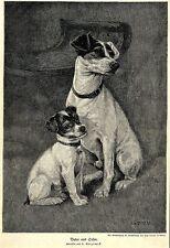 Padre e figlio * A. weczerzick * firmato sul disco. pressione di 1908