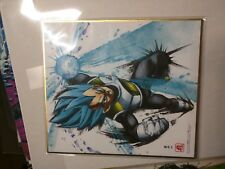 Official Dragon Ball Super Vegeta Blue print by Bandai purchased in Japan