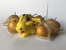 """RARE Superfruit Pichu """"pikachu""""berry tomato seeds with FREE Shipping!"""