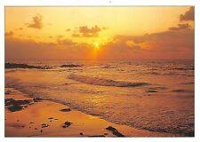 B50003 Dans le soleil couchant les vauges deversent sur le sable des lar  france