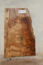 Cotton burl board with pin, Rustic, Woodworking Project COTSPC38