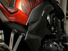 KAWASAKI Z1000 SX 2014-2019 Carbon Rahmen Schoner Schutzer Abdeckung Cover