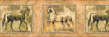 """""""HORSES FRAMED""""-BORDER-9""""HIGH-$9.00 PER ROLL-FREE S&H"""