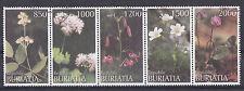 Buriatia - Bloemen/Flowers/Blüte