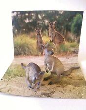 Bandai WWF kangaroo Animal mini pvc figurine figure set with card