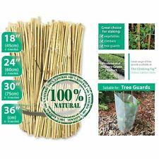 NATURAL Bamboo Stakes - 45cm, 60cm, 75cm or 90cm. Garden tree climber trellis
