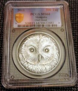 500 TOGROG  Mongolia Ural Owl