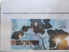 Celebration Big Sur Folk Festival 1970 Promo Uncut Album Cover Proof Beach Boys