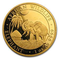 Somalia 1 oz Gold African Elephant (Abrasions) - SKU#155385