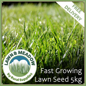 5kg Lawn Grass Seed | Premium Mix For Superior Front and Back Lawns. ND DELIVERY